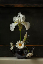 White Iris Flower In A Black Teapot