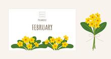 誕生月の花のイラスト|2月の誕生花、プリムローズ