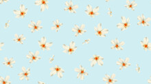 Seamless Floral Pattern With Jonquil Flowers On Summer Background, Watercolor Illustration. Template Design For Textiles, Interior, Clothes, Wallpaper