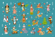 Cute Funny Christmas And Happy New Year Dogs In Winter Santa Claus Hats And Scarfs.pets Sledding Skiing Jumping Running Having Fun Enjoying Holidays Celebrating And Giving Receiving Presents