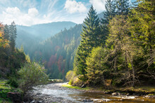 Countryside Landscape With Mountain River. Nature Scenery With Spruce Trees On The Hills On A Sunny Autumn Day. Stones In The Shore Of A Stream Running Through The Valley