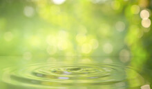 Green Water Drop Background In Nature