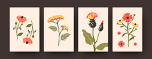 Flower Illustration Set In Pastel Colors. Set Of Pastel Decorative Flowers On Beige Background. Postcard Invitation Design. Plants And Blossom Concept For Banners, Website Designs Or Backgrounds