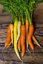 Bunch Of Carrots On Waethered Wood