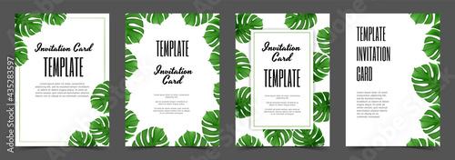 Fotografie, Obraz Monstera leaf Tropical leaves banners set on white background
