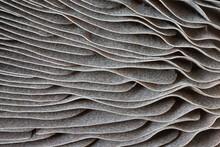 Closeup Of Portabella Mushroom Gills
