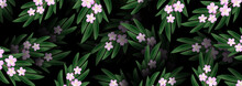 Realistic Pink Blossom And Green Leaves Background. Flowering Cherry Exotic Leaf Texture. Spring Flowers. Botanical Design For Banner Cosmetics Spa Perfume Health Care Products Aroma.