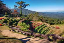 Huai Nam Dang National Park ,flower And Mountain