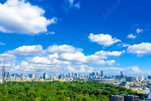 Canvastavla 東京風景 初夏 新国立競技場と街並