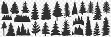 Silhouettes Of Spruce And Pine Doodle Set. Collection Of Hand Drawn Various Black Silhouettes Of Forest Trees Pine Trees In Rows Isolated On Transparent Background