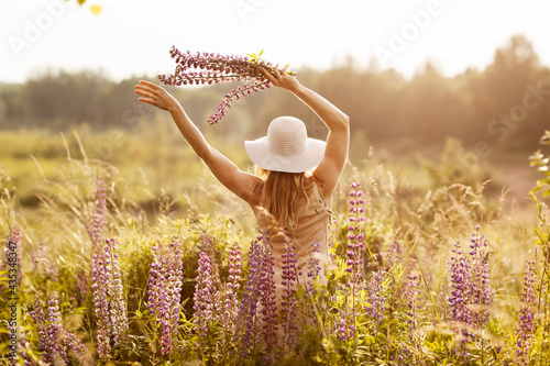 Fototapeta A young girl in a light dress and a hat with a bouquet in her hands on a lupine field, looking at the sunset