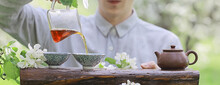 Tea Ceremony, Asian Tea Master Prepares Fresh Spring Green Tea In The Garden