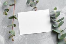 Invitation Card Mockup With Eucalyptus Twigs On Grey Stony Background