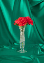 Fresh Apple Red Roses In The Vase With Bold Green Curtain. Retro Creative Decoration Idea. Abstract Art. Minimalism