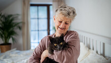 Happy Senior Woman With Cat Resting In Bed At Home.