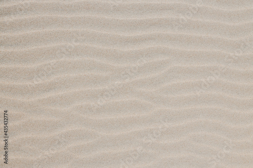 Photo Sand Dunes and Beach Texture Background