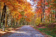 Scenic Autumn Drives In Europe