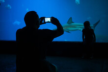 Father Make A Photo Of Daughter Standing In Front Of Aquarium With Shark And Other Fishes Inside.