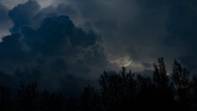 Thunderstorm, Trees Bending In The Strong Wind And A Little Bird Flying Through The Storm.