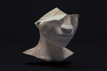 Statue Head Cut In Half With Marble Texture