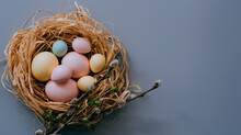 Easter Eggs In Nest On Grey Background. Easter Background With Eggs And Spring Flowers. Top View With Copy Space.