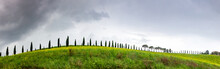 Green Landscape With Cypress Trees And Rolling Hills, Tuscany, Italy