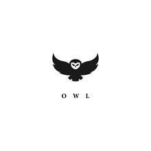 Vector Design Owl Logo. Logo Template