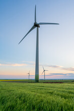 Three Wind Turbines That Produce Renewable Green Energy On A Wheat Field At Sunset.