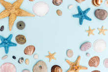 Summer Frame From Colorful Sea Stars, Seashells, Shellfishes, Pebble Stones On Pastel Blue With Copy Space.