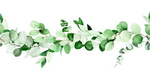 Watercolor Drawing, Seamless Border Of Eucalyptus Leaves And Branches. Isolated On White Background Border, Frame From Green Eucalyptus Leaves.