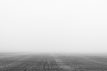 Agricultural Field In The Fog. Minimal Composition, Monochrome Image. Place For Text