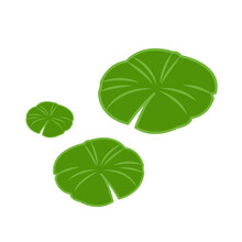 Lily Pad Pattern Vector. Wallpaper. Free Space For Text. Background.
