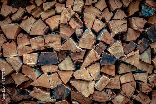 Obraz na plátně Closeup of woodpile of cut tree trunks  - for wallpaper and patterns