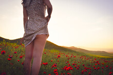 Expressive Sexy Woman In Flower Dress Standing In Poppy Field Outdoors With Sunset Blank Space Glamor Vintage Background
