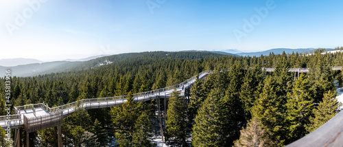 Fotografia View of wooden bridge treetop Pohorje observation deck in winter.