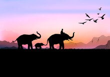 Silhouette Image Black Elephant With Elephant Mahout Walking At The Forest With Mountain And Sunset Background Evening Light Vector Illustration