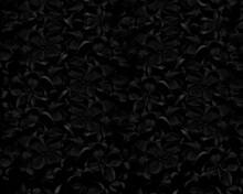 Tło Czarne Kwiaty