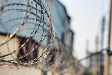 Spirals Of Barbed Wire On A Concrete Fence. A Symbol Of Incarceration And Lack Of Freedom. Punishment For A Crime.