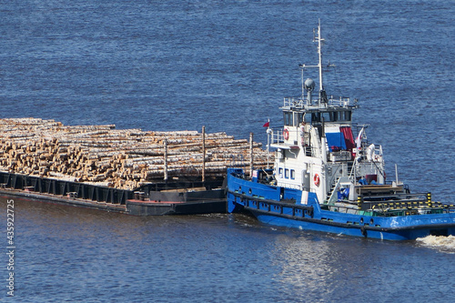 The barge transports cargo, timber logs along the river in summer Fototapet
