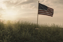 3d Rendering Of Small Waving American Flag Standing On Peaceful Flower Meadow To Remember To Celebrate The National Holiday