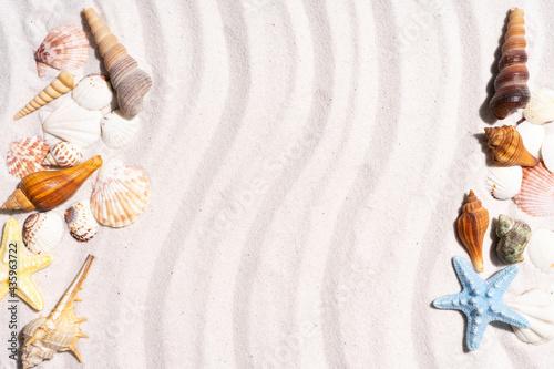 Obraz na płótnie Summer background with seashells and conch shells on the sand