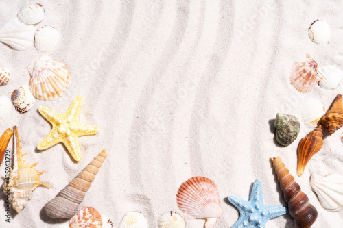 Leinwand Poster Summer background with seashells and conch shells on the sand