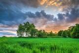 Fototapeta Na sufit - Drzewa na polach a w tle kolorowe rozświetlone słońcem chmury
