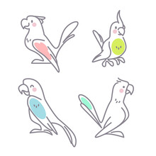 Collection Of Cute Funny Exotic Macaw And Ara Parrots Characters Isolated On White Background. Vector Flat Outline Hand Drawn Illustration. For Kids Illustrations, Nursery Decor, Cards, Banners.