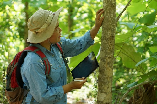 Fotografia Asian female backpack hiker travel alone in forest , take photos, survey and collect information of botanical plants by using smart tablet