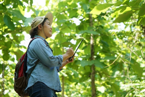 Carta da parati Asian female botanist is at the forest to survey and collect information of botanical plants by using smart tablet