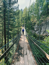 Rear View Of  A Young Man Walking On Footbridge In A Forest