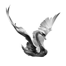 Painted Bird Swan Spreads Its Wings On A White Background