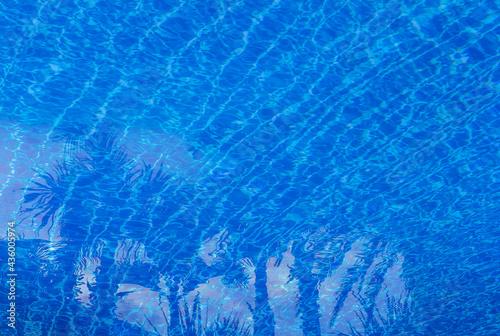 Cuadros en Lienzo Eau bleue de piscine avec reflets de palmes
