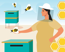 Taking Care Of Bees, Eco Friendly Apiary, Flat Vector Stock Illustration With Woman Beekeeper And Bee Houses For Honey Production